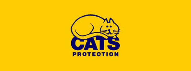 Green Days Work Placements - Cats Protection Charity Shop
